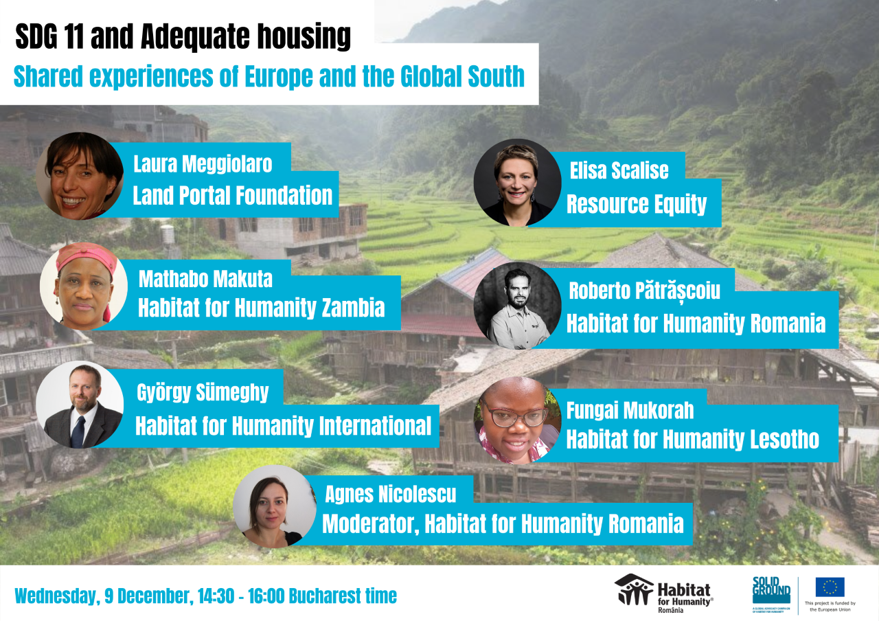 SDG 11 and Adequate housing: Shared experience of Europe and the Global South