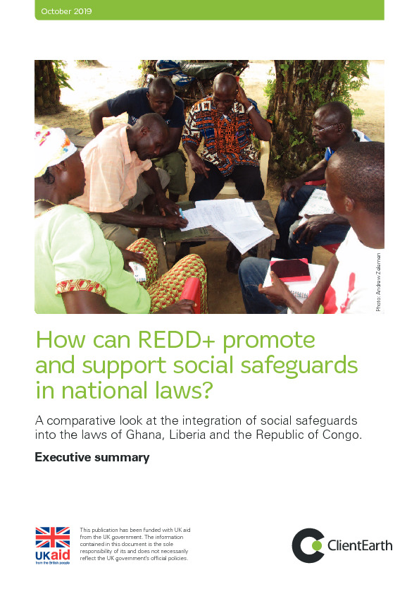How can REDD+ promote and support social safeguards in national laws? Executive summary