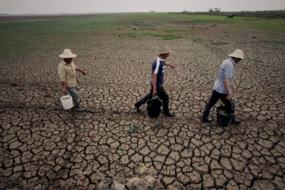 Photo AFP.jpg