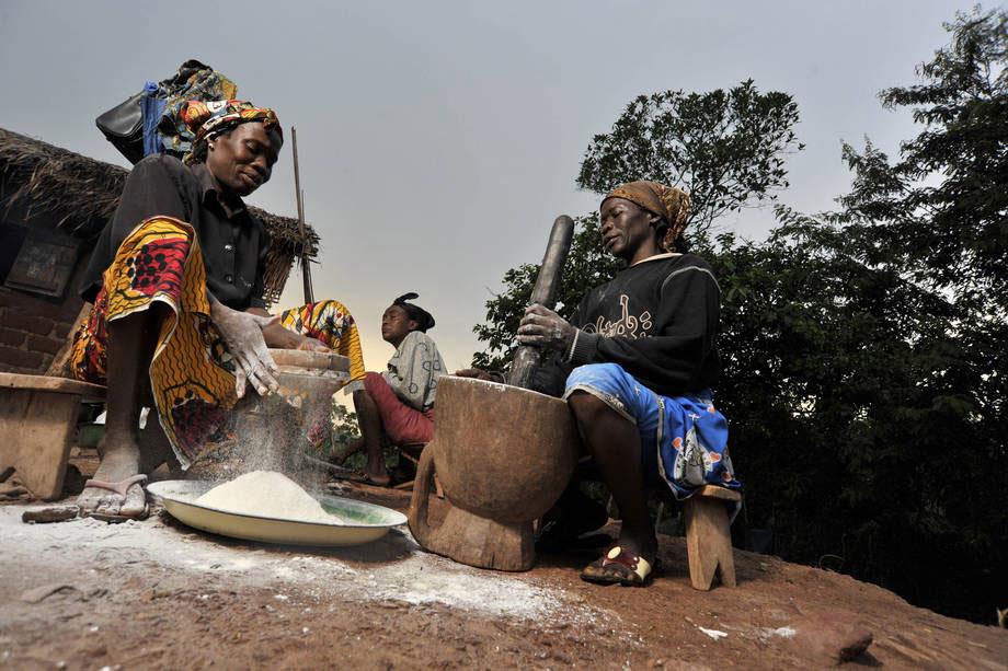 Foto: FAO/Riccardo Gangale