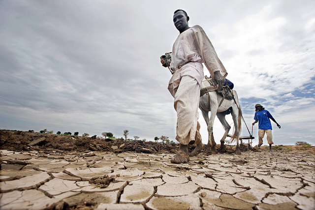 Men displaced from Shangil Tobaya farm rented land for the rainy season in Dali, close to Tawila in the Sudanese state of North Darfur. They are part of a community of displaced persons who have set up camp in Dali, fleeing the heavy fighting that took pl