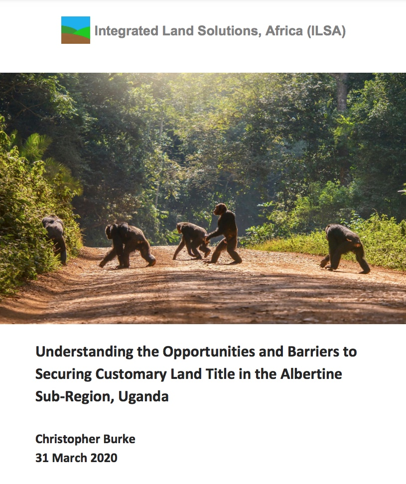 C. Burke, ILSA Land Tenure Security Report, IIED, 31 March 2020