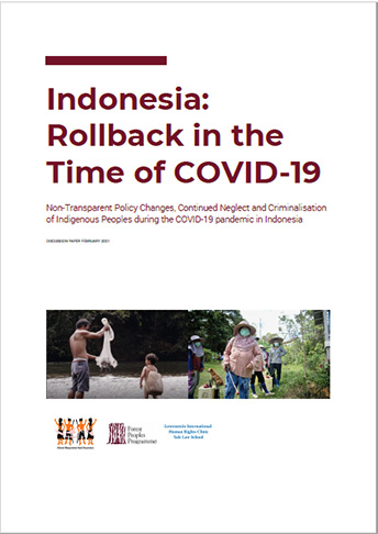 Rollback in the time of COVID-19 - Indonesia country report