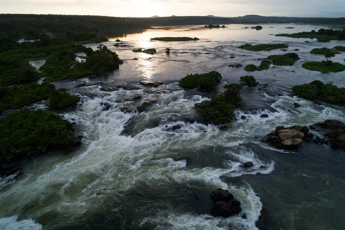 Rivers are key to restoring the world's biodiversity