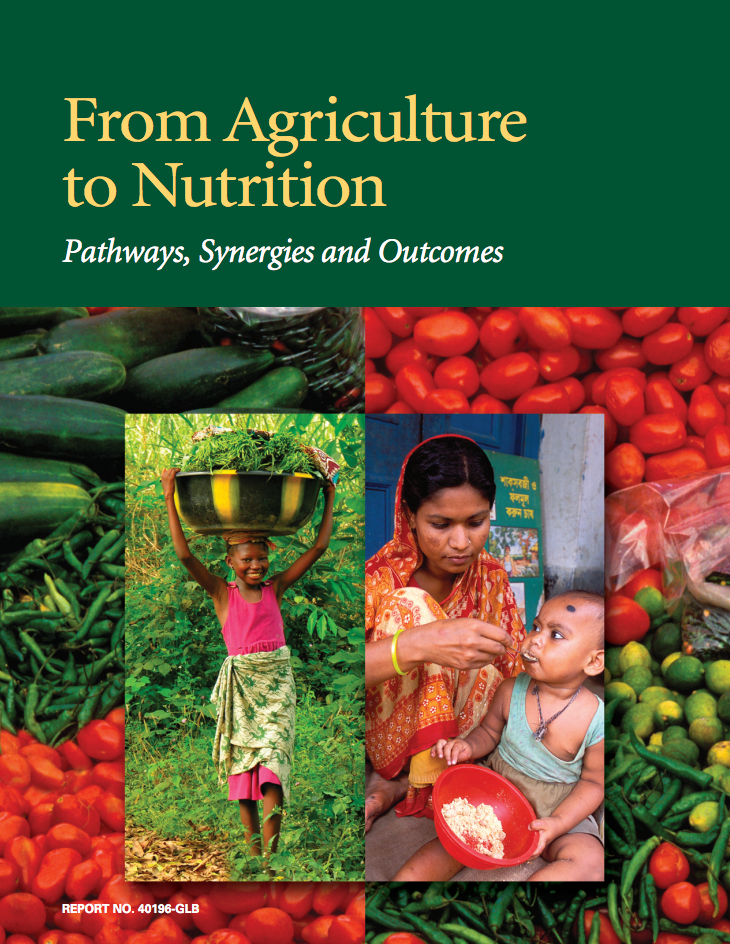 From Agriculture to Nutrition: Pathways, Synergies and Outcomes cover image
