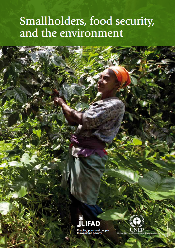 Smallholders, food security, and the environment cover image