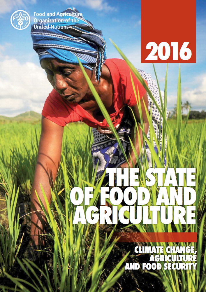 The State of Food and Agriculture: Climate Change, Agriculture and Food Security cover image