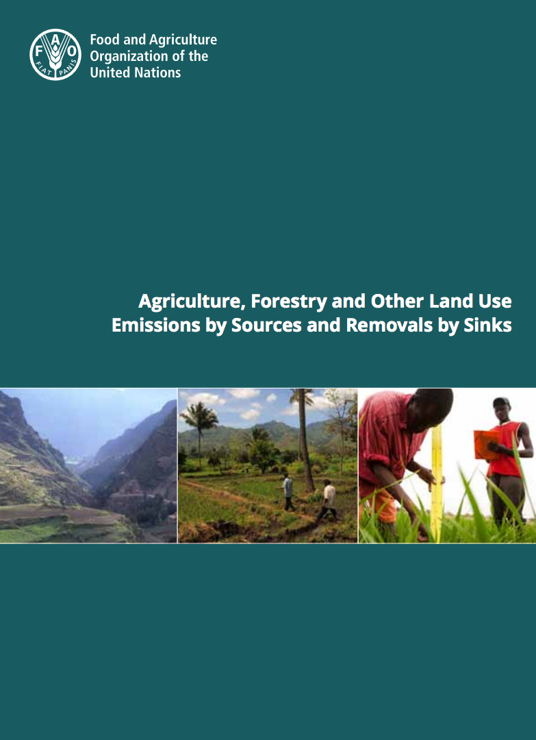 Agriculture, forestry and other land use emissions by sources and removals by sinks cover image