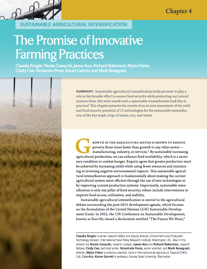 Sustainable agricultural intensification: The promise of innovative farming practices cover image