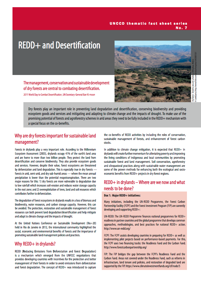 REDD+ and Desertification cover image