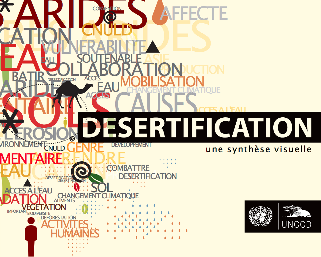 Desertification: une synthèse visuelle cover image