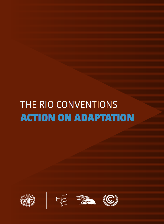 The Rio Conventions: Action on Adaptation cover image