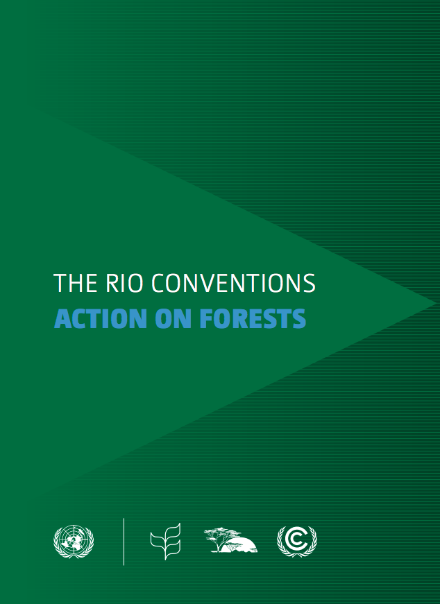 The Rio Conventions: Action on Forests cover image