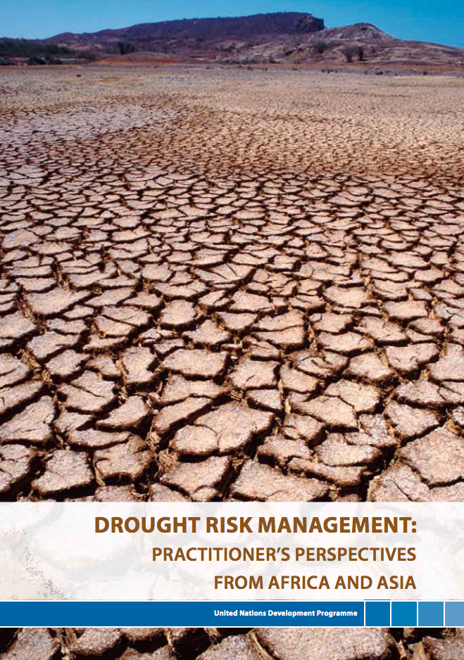 Drought risk management: Practitioner's perspectives from Africa and Asia cover image