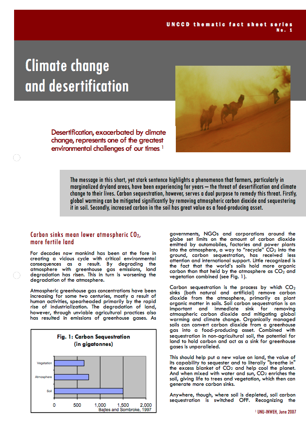 Climate change and desertification cover image