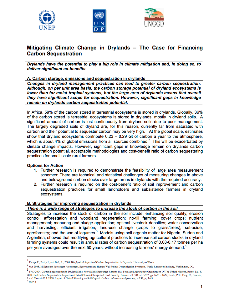 Mitigating Climate Change in Drylands – The Case for Financing Carbon Sequestration cover image