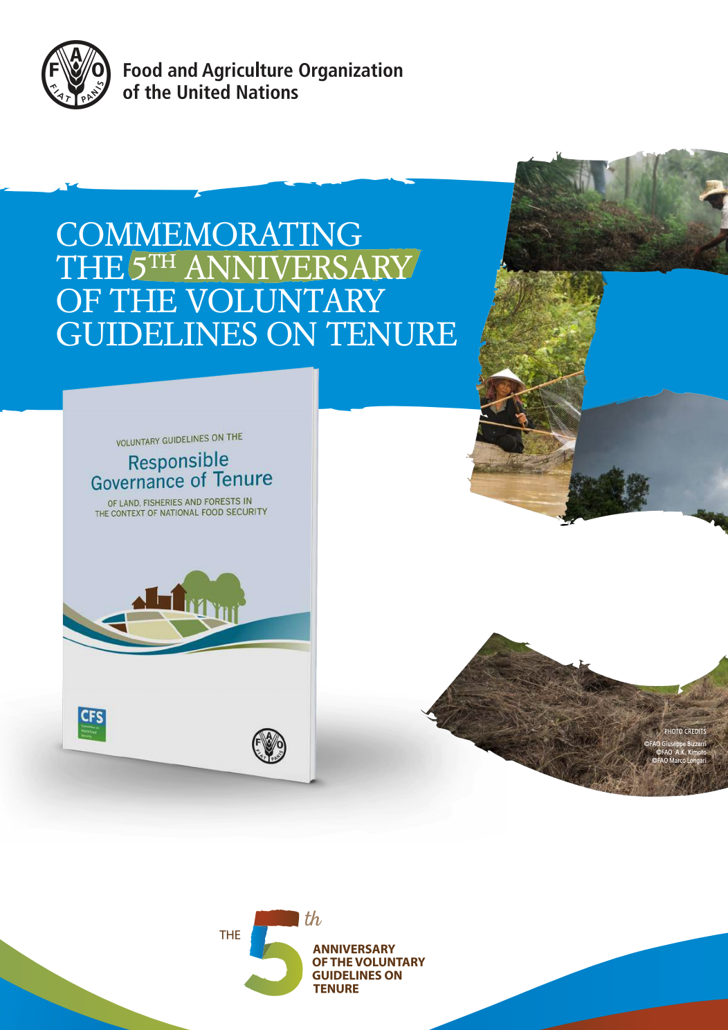 Commemorating the 5th Anniversary of the Voluntary Guidelines on the Governance of Tenure cover image