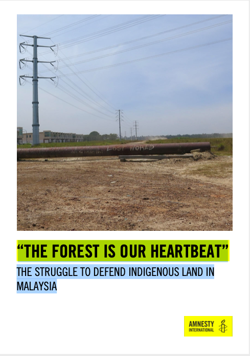 """THE FOREST IS OUR HEARTBEAT"": THE STRUGGLE TO SAVE INDIGENOUS LAND IN MALAYSIA"