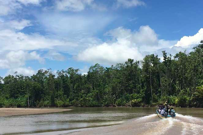 Indonesia's LESTARI Project: From Village Empowerment to Landscape Conservation