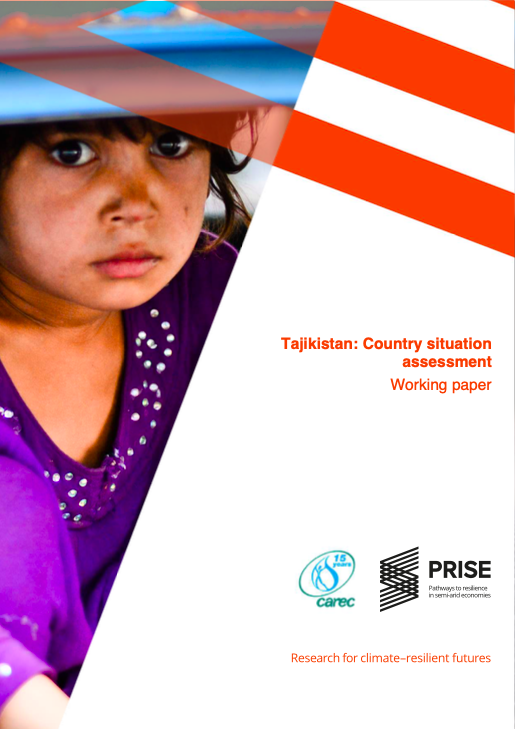Tajikistan: Country Situation Assessment
