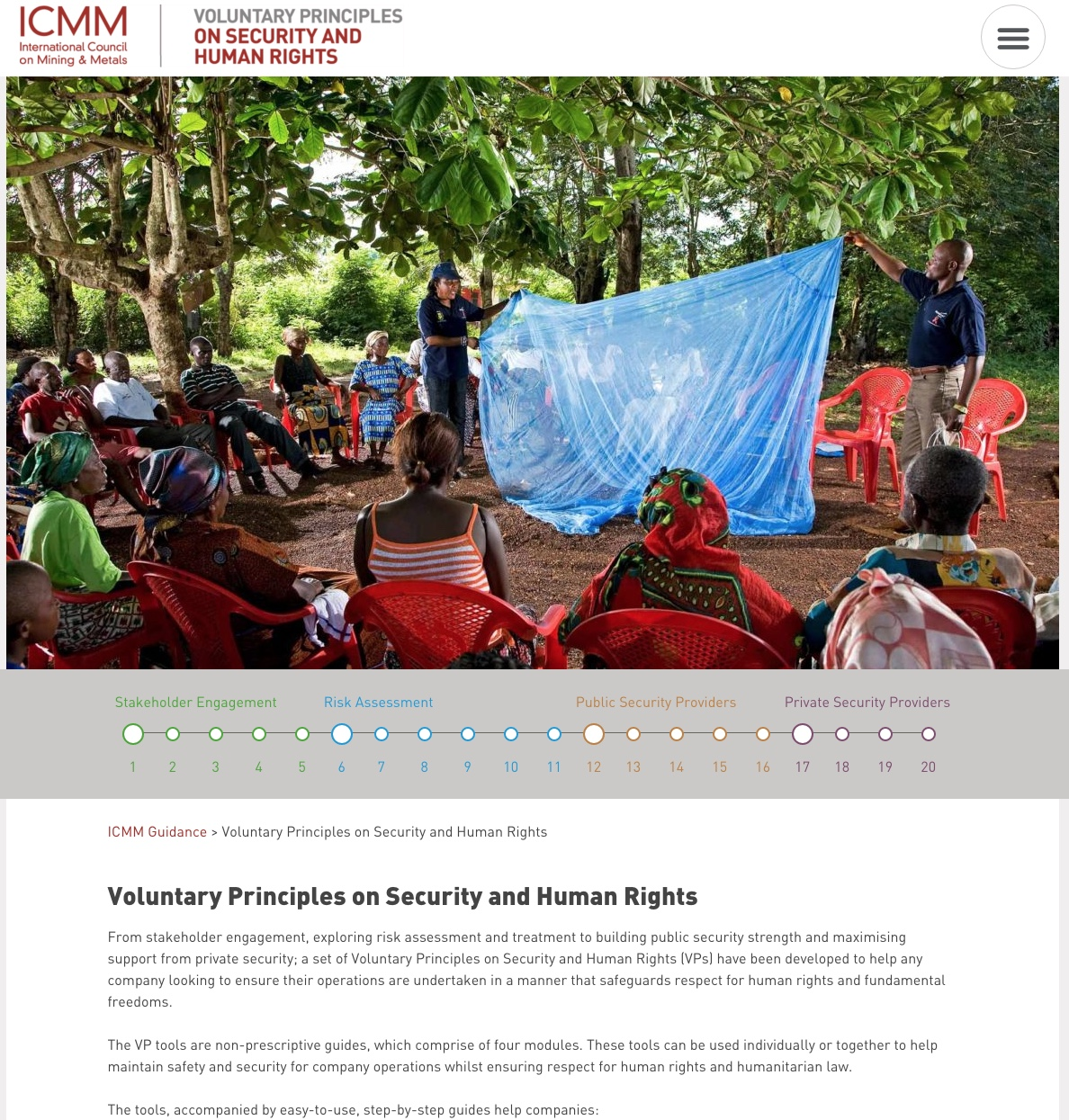 Voluntary Principles on Security and Human Rights