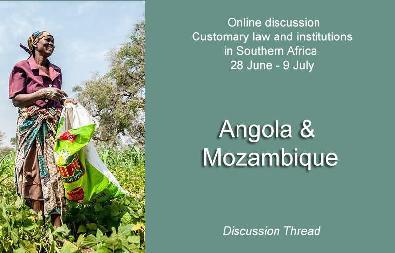 Angola & Mozambique - Online discussion on customary law - 28 June - 9 July