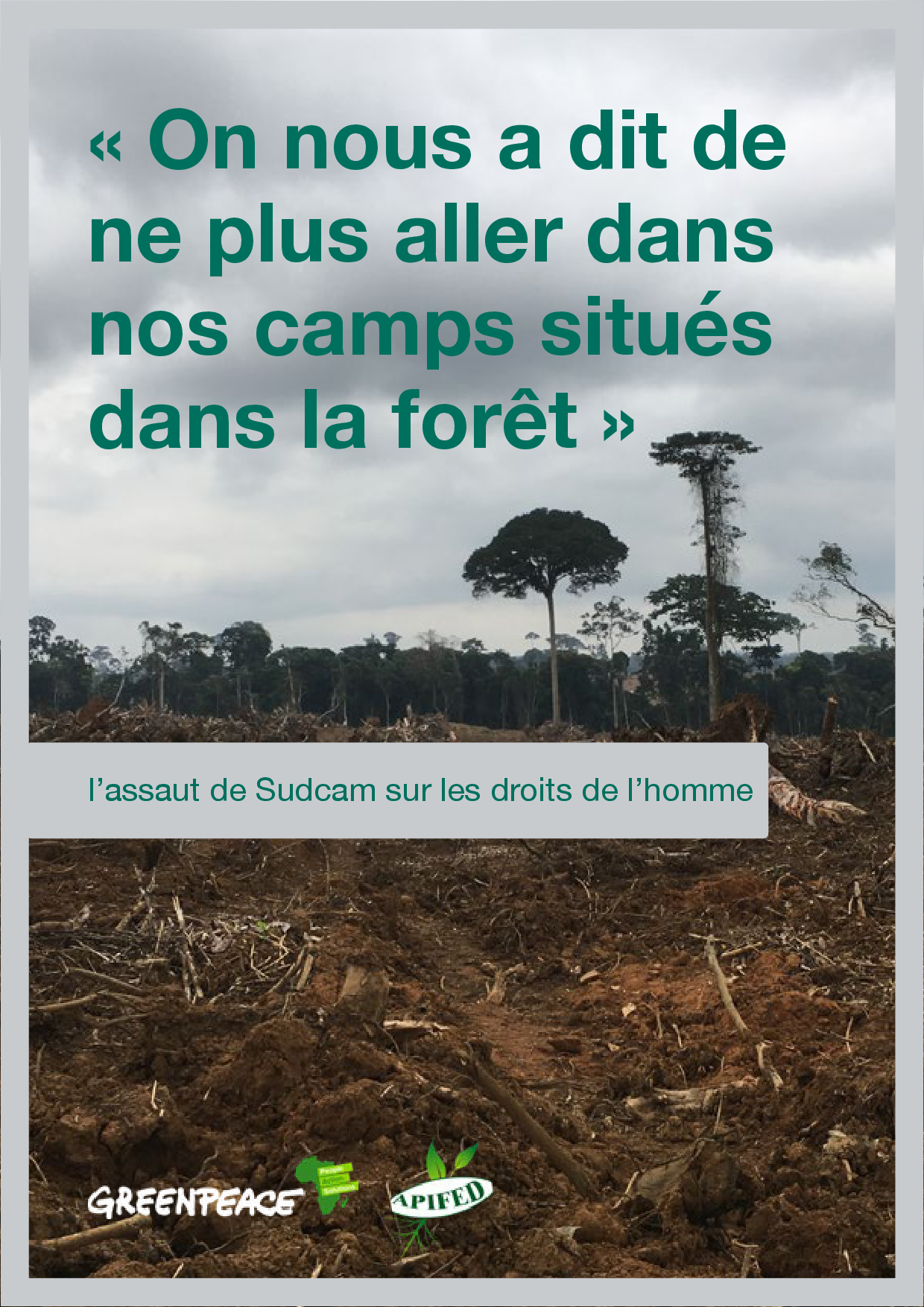 f4497dc3-greenpeace-baka-report-french.png