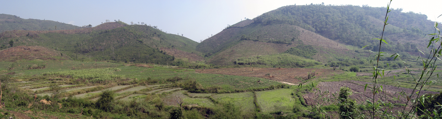 Figure 8: Clearing jungle for more profitable rubber trees - Muang Sing, Lao PDR (by Houston Marsh)