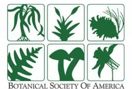 Botanical Society of America logo