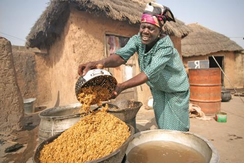 ghana agriculture