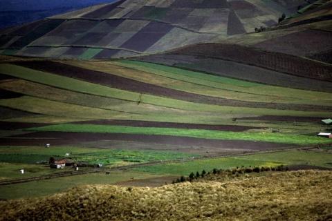landscape_southamerica
