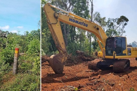 oraing mondulkiri state forest supplies_