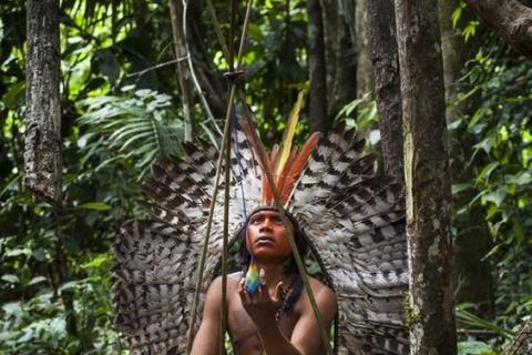 Fonte: Brazil Wonders