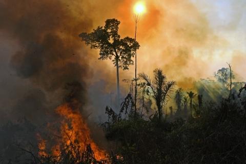 FOTO: CARL DE SOUZA / AFP