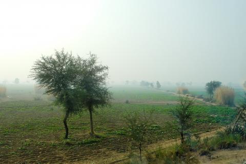 india farmland