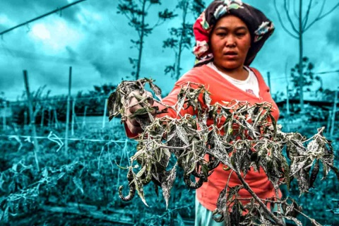 gender equity in access to land related News | Land Portal