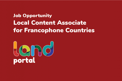 Local Content Associate for Francophone Countries