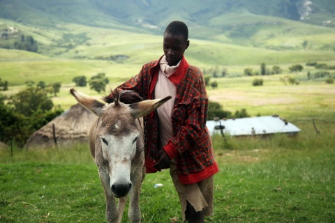 LesothoIFADSustainableDevelopment