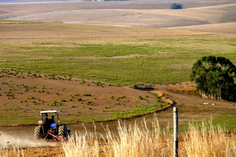 Ploughing The Fields of Fall - Western Cape - South Africa_photo by Christopher Griner_FLICKR creative commons