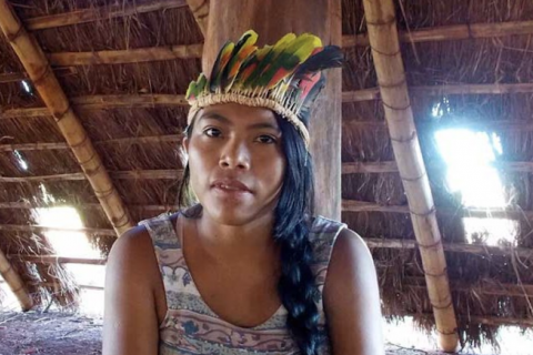 Landmark decision: Brazil Supreme Court sides with Indigenous land rights