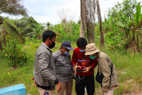 UNDP supports Indonesia turning digital to monitor land cover