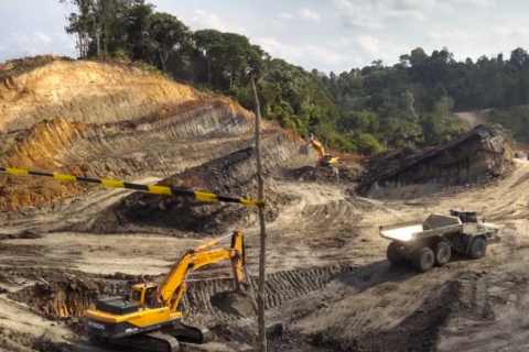 Being realistic about coal mine rehabilitation in Indonesia: An ecological perspective