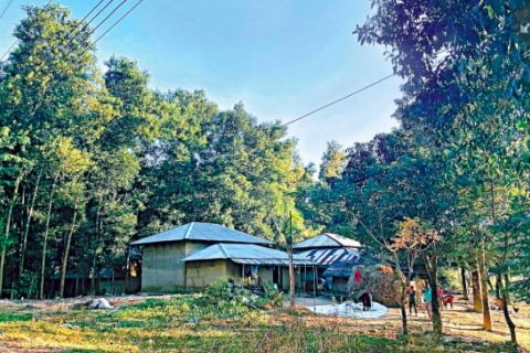1,60,566 individuals, organisations grabbed 2.57 lakh acres of forest land