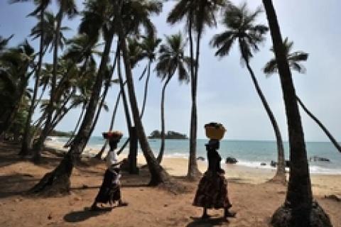 Le terrain vendu se trouve à Whale Bay, connu pour ses cétacés et un endroit clé pour la reproduction des poissons, selon ceux qui s'opposent au projet. Photograph: Issouf Sanogo/AFP/Getty
