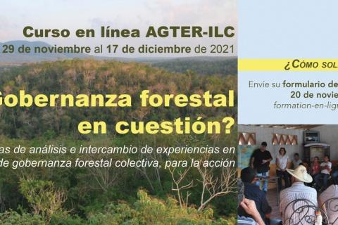 Curso ¿Gobernanza forestal en cuestión?
