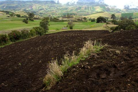 Colombia land prepared for planting