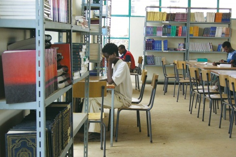Cross Section of Students in a library