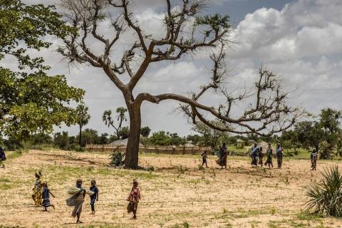 © FAO/Luis Tato Jusqu'à 65% des terres productives sont dégradées, tandis que la désertification touche 45% des terres en Afrique.