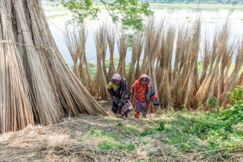Why food production hinges on women