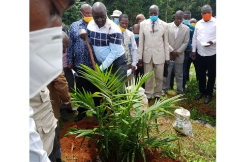 Agriculture minister Vincent Ssempijja launches the palm oil project. Photo | Shabibah Nakirigya